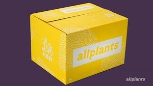 Allplants TV Advert